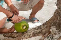 Native man cutting fresh picked coconut Stock Image