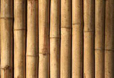 Native style bamboo background philippines Royalty Free Stock Photography
