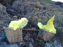 Native sulfur rocks from lake Ijen crater, Java, Indonesia. Native sulfur rocks mined from lake Ijen crater, Java, Indonesia. These are carried down to the Royalty Free Stock Photo