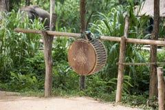 Native Thai drum for elephant show. Lampang ,Thailand Stock Photo