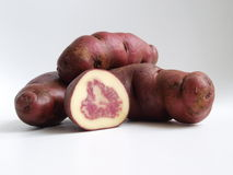 Native variety of potato tubers Stock Image