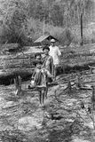 Natives indians Awa Guaja of Brazil Stock Photography