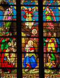 Nativity Scene at Christmas in St Patrick's Cathedral, NYC. Stained Glass window depicting a Nativity Scene at Christmas in St. Patrick's Cathedral in New York Royalty Free Stock Image