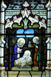 Nativity stained glass window Stock Image