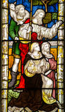 Nativity Stained Glass Window royalty free stock photography