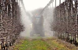 Natryskowa maszyna kropi pestycydy w jabłczanym sadzie w pierwszy dniach wiosna widok z powrotem obrazy stock
