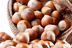 Nats. Group of filberts. Nuts. Group of filberts in the fabric bag Stock Image