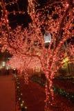 natt för 2 jullampor Royaltyfria Foton