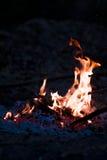 natt för brasaburningclose upp trä Royaltyfria Bilder