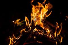 natt för småskogcampfireförbränning Arkivfoton
