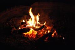 natt för småskogcampfireförbränning Arkivbilder