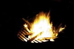 natt för småskogcampfireförbränning Royaltyfri Bild