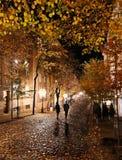 Natt i Skadarlia i Belgrade fotografering för bildbyråer
