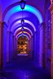 Natt Lviv Royaltyfria Bilder