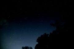 Natt mycket av stjärnor bak träden Fotografering för Bildbyråer