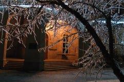 Natt och is på träd Royaltyfri Foto