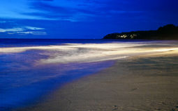Natt på den tropiska stranden. Phuket. Thailand Royaltyfria Foton