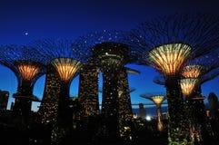 Natt på trädgårdar vid fjärden Royaltyfria Bilder