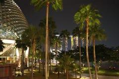 natt singapore arkivfoto