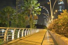 natt singapore Fotografering för Bildbyråer