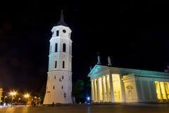 Natt som är cahtedral på Vilnius Royaltyfri Fotografi