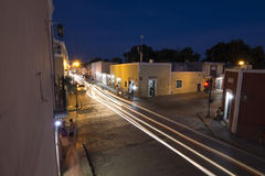 Nattaktivitet i koloniinvånaren Mexico Arkivfoto