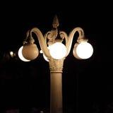 Nattbelysning i parkera av staden arkivfoton