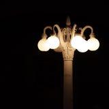 Nattbelysning i parkera av staden fotografering för bildbyråer