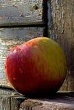 Natte appel op het hout royalty-vrije stock foto's