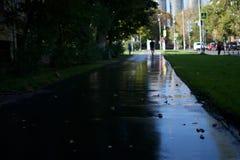 Natte asfaltweg op een zonnige dag in de herfst in de stad van Moskou royalty-vrije stock fotografie
