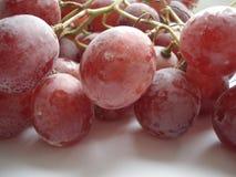 Natte borstel van grote roze druiven Stock Afbeelding