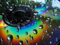 Natte CD stock afbeeldingen