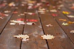Natte de herfstbladeren op Houten Dek stock afbeelding