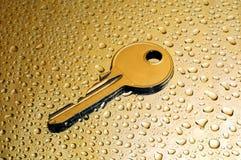 Natte gouden sleutel Royalty-vrije Stock Foto