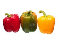 Natte groene paprika's Royalty-vrije Stock Fotografie