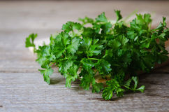Natte groene peterselie Royalty-vrije Stock Foto's