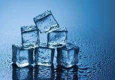 Natte ijsblokjes op blauwe achtergrond Stock Fotografie