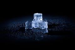 Natte ijsblokjes op zwarte achtergrond Stock Foto