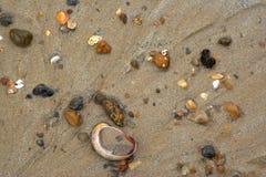 Natte kleurrijke stenen en shell op zand royalty-vrije stock afbeelding