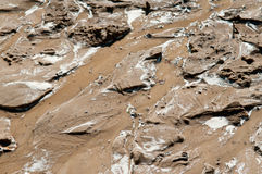 Natte modder Stock Afbeelding