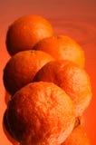 Natte oranje #2 stock afbeelding