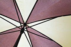Natte paraplu Royalty-vrije Stock Afbeeldingen