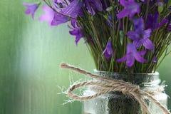 Natte purpere bloemen royalty-vrije stock afbeelding