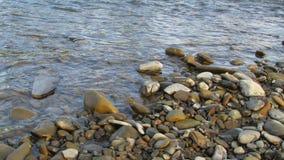 Natte rivierstenen in het water riverbank royalty-vrije stock afbeeldingen