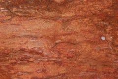 Natte Rotsen bij de Verhoogde weg van Reuzen stock afbeelding