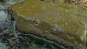 Natte steen in een woedend water stock videobeelden