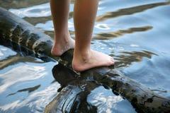 Natte voeten Royalty-vrije Stock Afbeelding