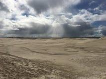 Natte woestijn na een douche van regen royalty-vrije stock foto's