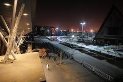 Natten 2010 för Shanghai världsexpo Arkivbild