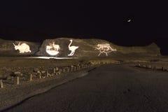 Natten i Timna parkerar Fotografering för Bildbyråer